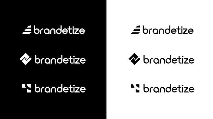 brandetize-logo-design-2